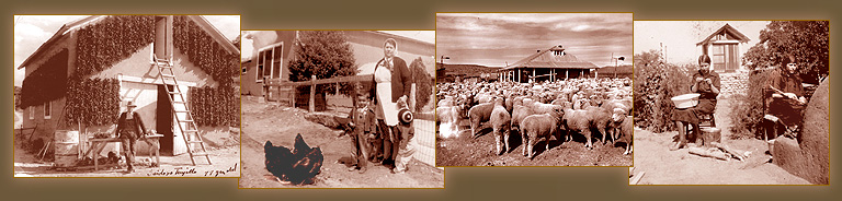 Historic family photos of the Casa Chimayo forefathers. here we see them hanging chiles to dry in the sun, herding sheep and making posole outdoors by the horno oven.